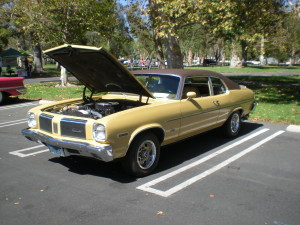 Olds-Club-Picnic-2015-012.JPG